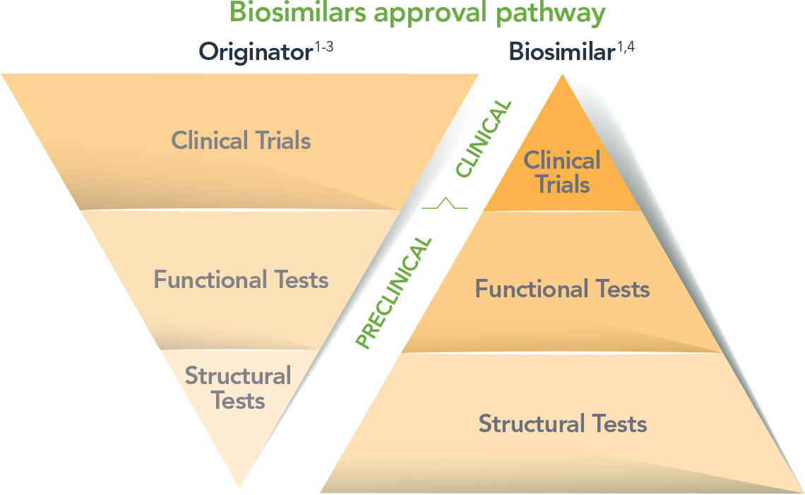 Review the Biosimilar Approval Pathway