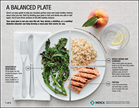 An Example of Food Serving Size in Each Section of the Plate for a Healthy Diet and Portion Control